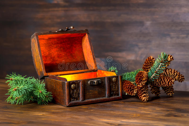Christmas winter fairy with miracle in opened chest. Beautiful b stock images