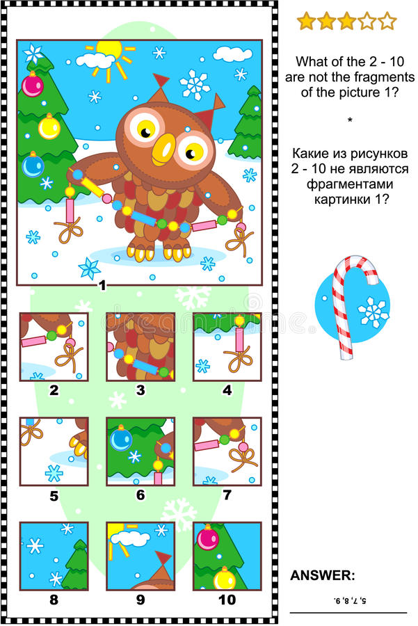 Christmas, winter or New Year picture riddle with owl - what does not belong? vector illustration