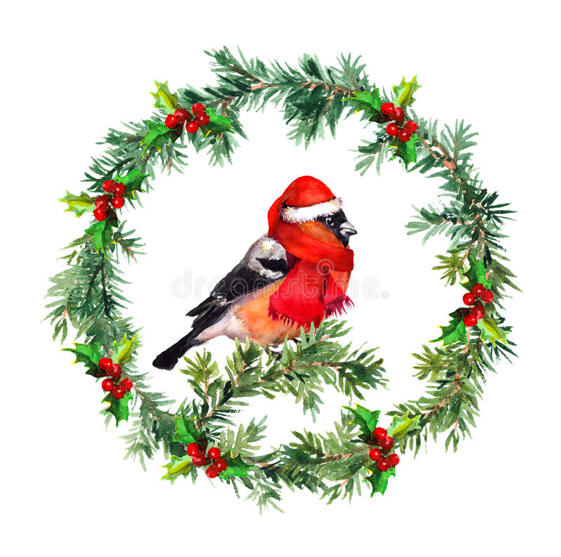 Christmas wreath - fir, mistletoe and bullfinch bird in santa hat. Watercolor vector illustration