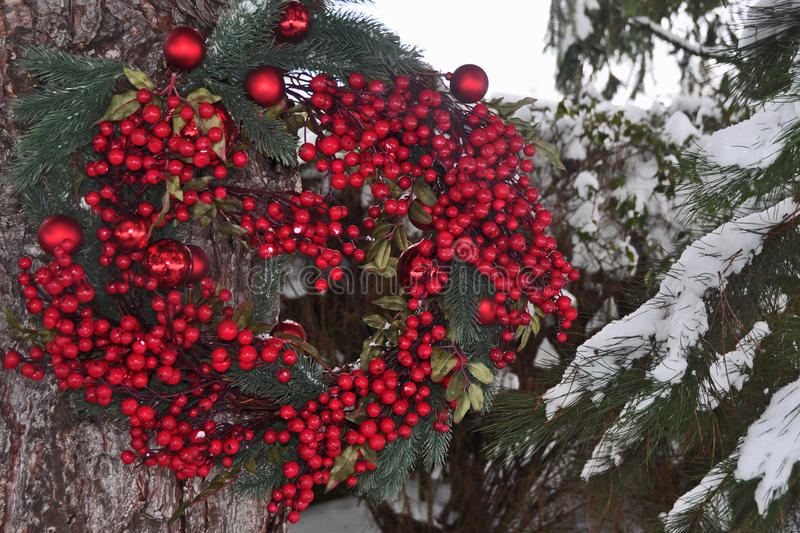 Christmas Wreath in Nature stock photo