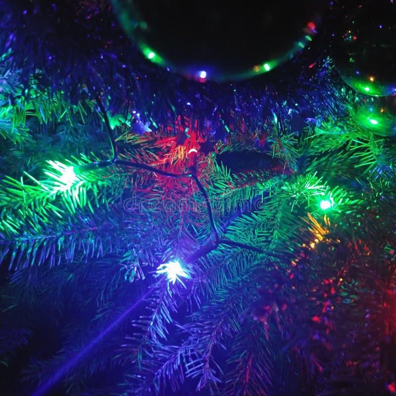 Christmass стоковая фотография
