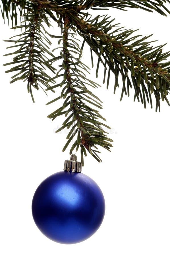 Christmass photos stock