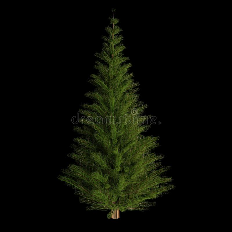 Christmass tree on black background. 3D rendered, undecorated stock illustration