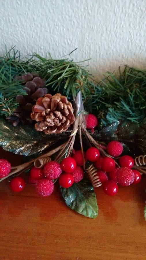 Christmassy-Anlagen lizenzfreies stockbild