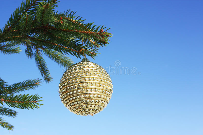 christmastime fotografia royalty free