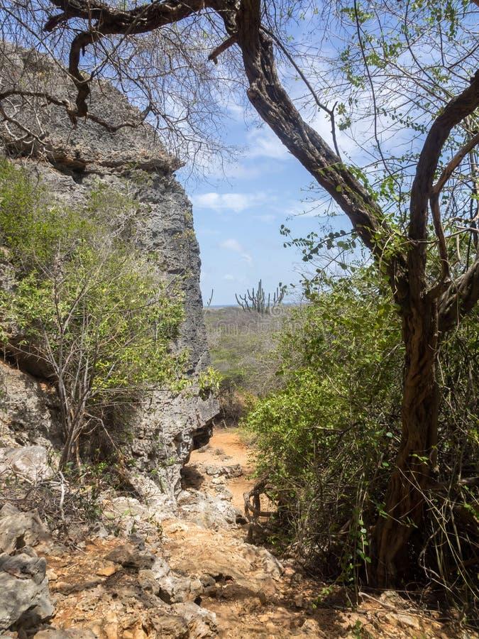 Christoffel nationalpark royaltyfria bilder