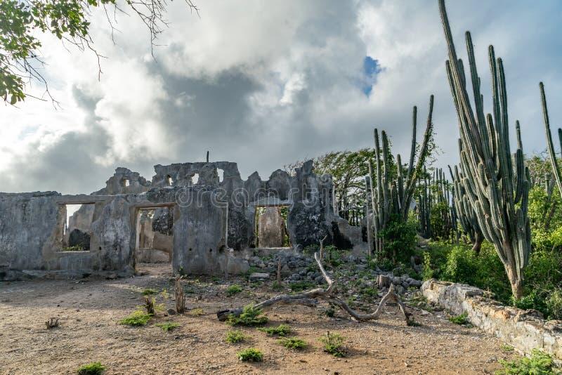 Christoffel nationalpark - förstörd landhouse royaltyfri fotografi