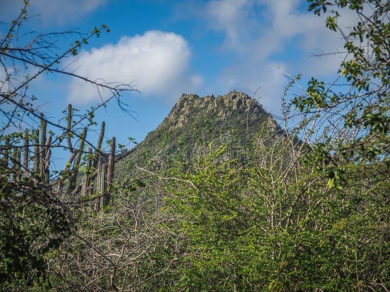 Christoffelberg berg - Christoffel nationalparkCuracao sikter royaltyfri bild
