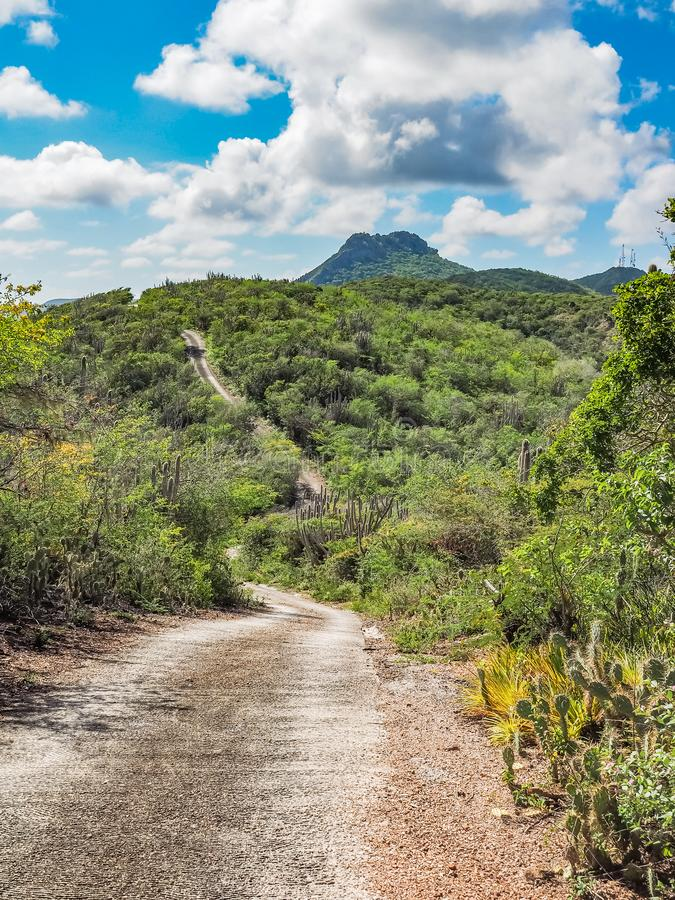 Christoffelberg berg - Christoffel nationalparkCuracao sikter fotografering för bildbyråer