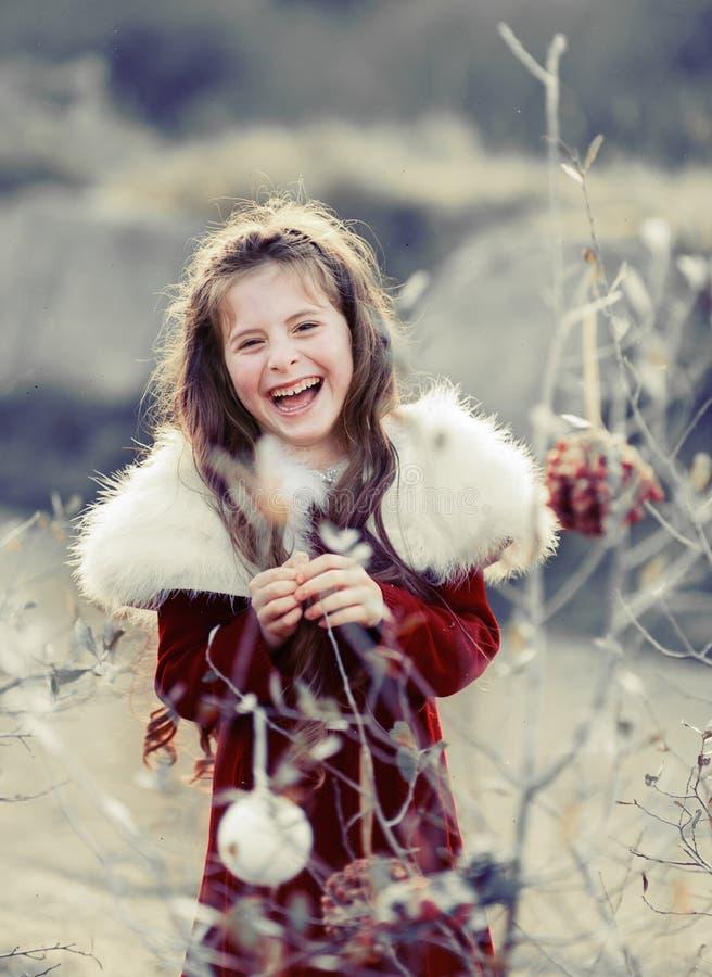 Chritmas Girl Stock Photography