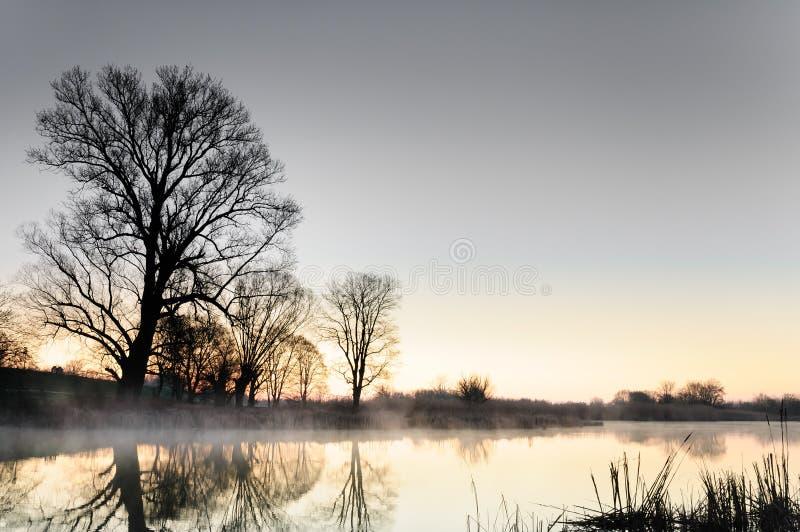Chromatische dageraad over een wilde die vijver door bomen in de herfstochtend wordt omringd stock foto's