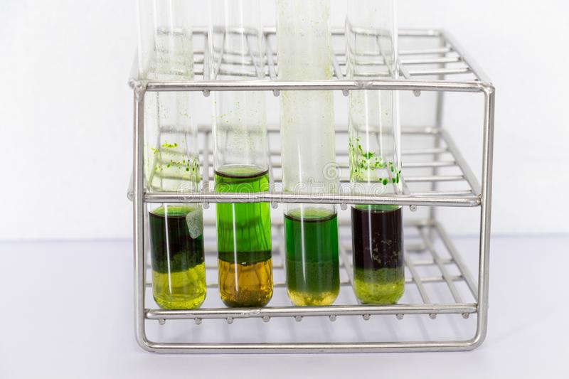 Chromatography is used to separate components of a plant. Study of Chromatography is used to separate components of a plant stock image