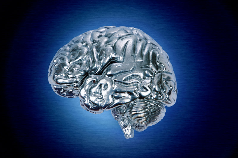 Chrome Brain Profile Stock Images
