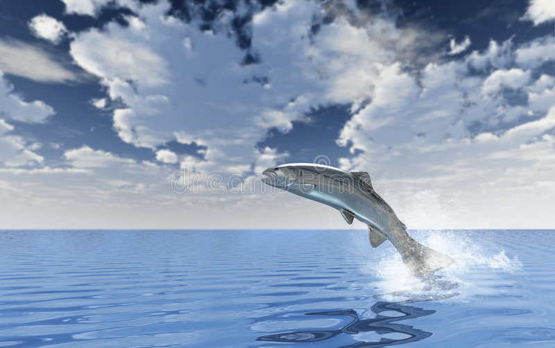 Chrome Trout. Jumping out of blue water with a huge sky in the background royalty free illustration