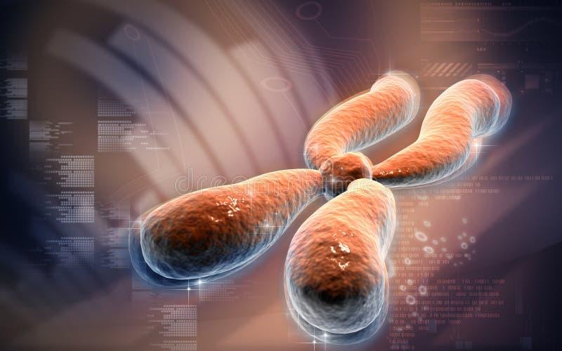 chromosom ilustracja wektor