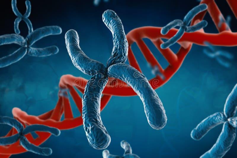 Chromosome bleu images libres de droits