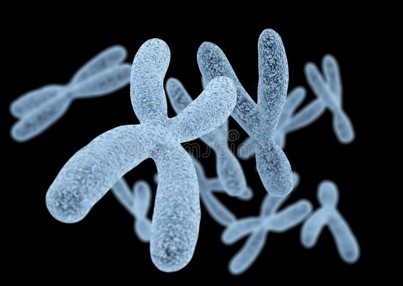 Chromosomen op zwarte achtergrond vector illustratie
