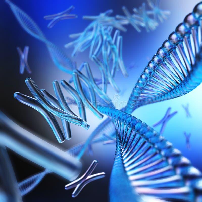 chromosoom DNA stock illustratie