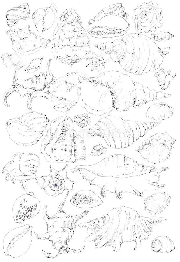 chroniony szczotkarski węgiel drzewny rysunek rysujący ręki ilustracyjny ilustrator jak spojrzenie robi pastelowi tradycyjny royalty ilustracja
