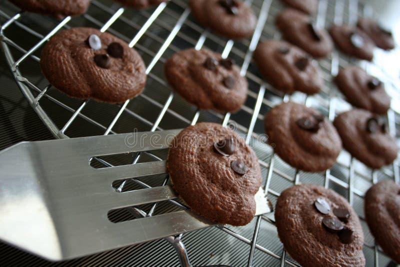 chrupiące ciasteczka czekoladowe obraz stock