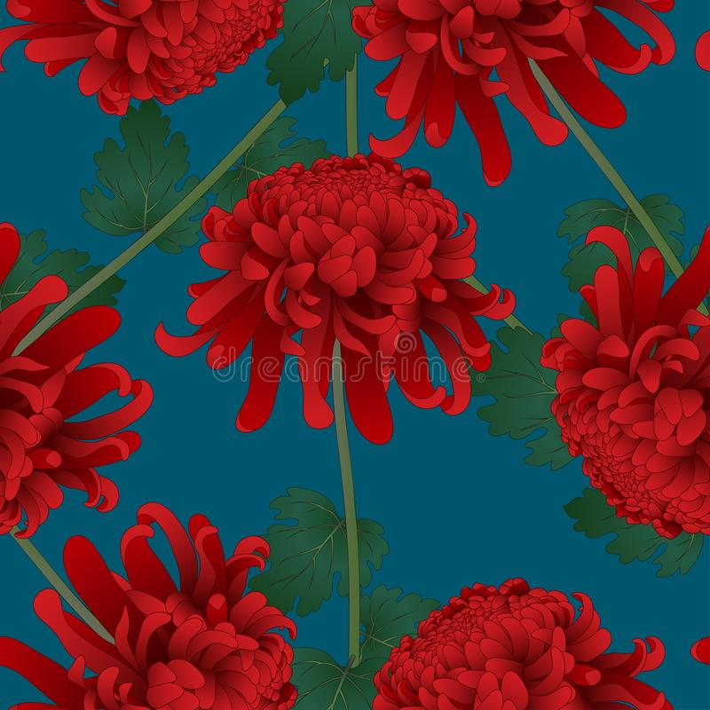 Chrysanthème rouge, fleur japonaise de Kiku sur le fond de bleu d'indigo Illustration de vecteur illustration stock