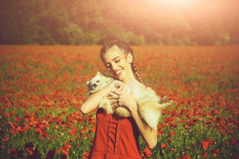 Chrysanth Feld Modeporträt eines sinnlichen sexy Mädchens Mädchen auf dem Gebiet des Mohns mit Hund von Spitz stockfoto