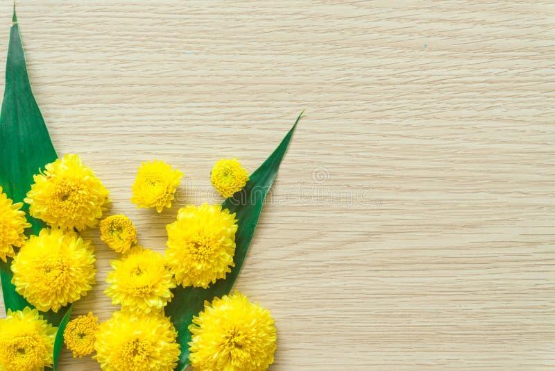 Chrysanth?me jaune sur un fond en bois, l'espace libre photos libres de droits