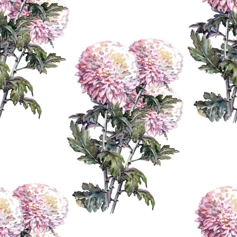 Chrysanthemenblume, Blumenstrauß, Aquarell, kopieren nahtloses stock abbildung