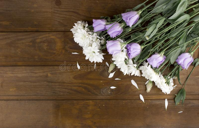 Chrysanthemum and Eustoma flowers arranged as a natural image on brown wooden weathered background with soft white violet blossoms royalty free stock photos