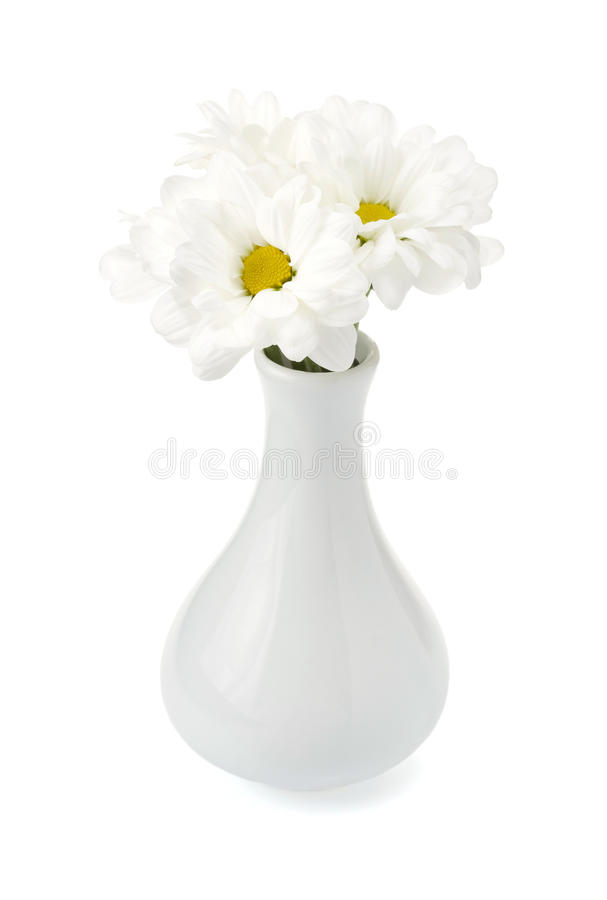 Download Chrysanthemum in vase stock image. Image of elegant, green - 28471033