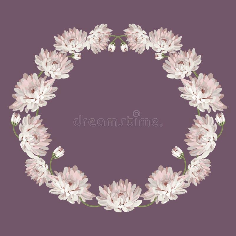 chrysanthemums Quadro decorativo do círculo com as flores para seu projeto Molde floral do cartão Ilustração do vetor para ilustração do vetor