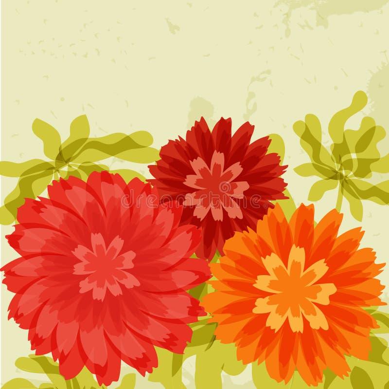 Chrysanthemums rouges et oranges sur le fond grunge illustration stock