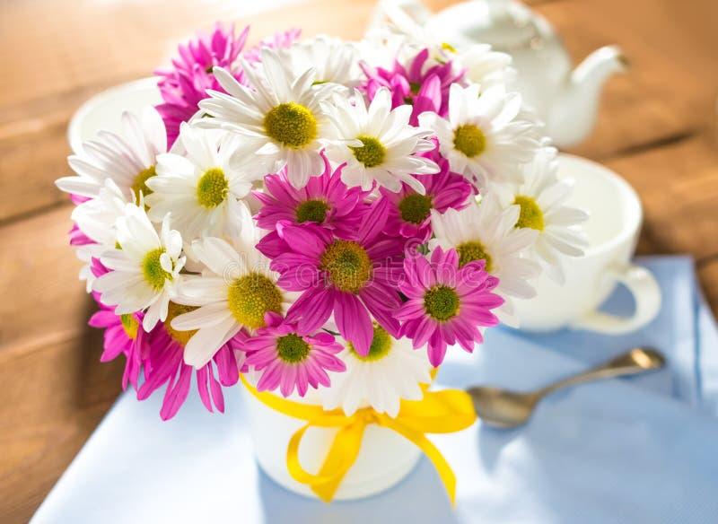 Chrysanths lizenzfreie stockfotos