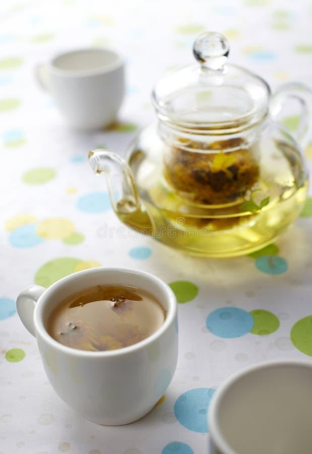 chryzantemy herbata fotografia stock