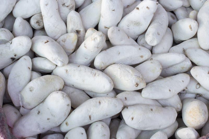 Chuño gevriesdroogd die aardappelproduct door Quechua en Aymara in Peru wordt gemaakt Ook geroepen pa'ssecas, tunta stock foto