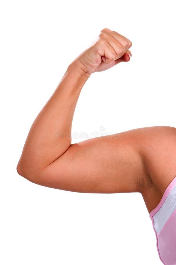 chubby γυναίκα δικέφαλων μυών στοκ εικόνα με δικαίωμα ελεύθερης χρήσης