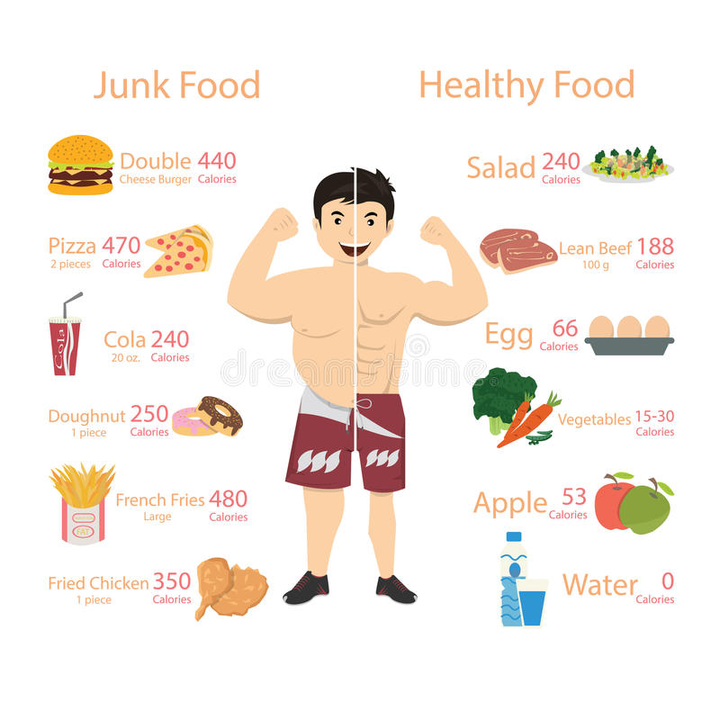 Chubby man and Muscular man vector illustration.  royalty free illustration