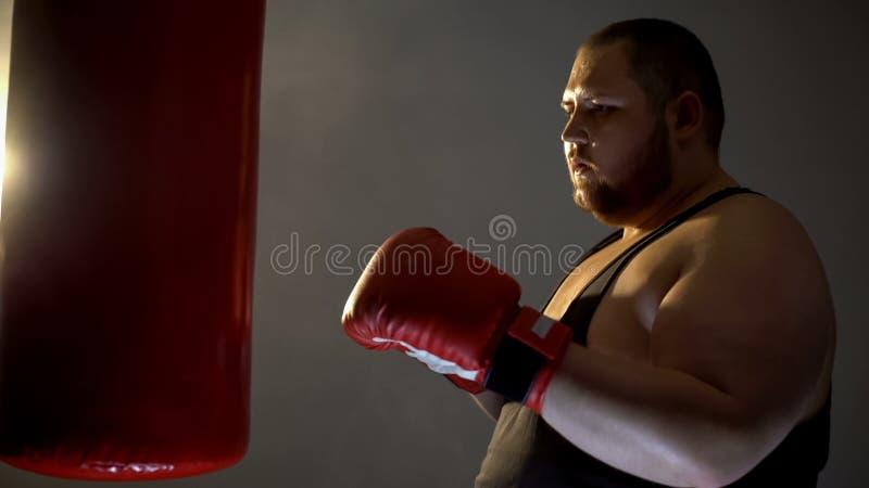 Chubby sportsman boxing punching bag, sport training program, healthy activity royalty free stock photo