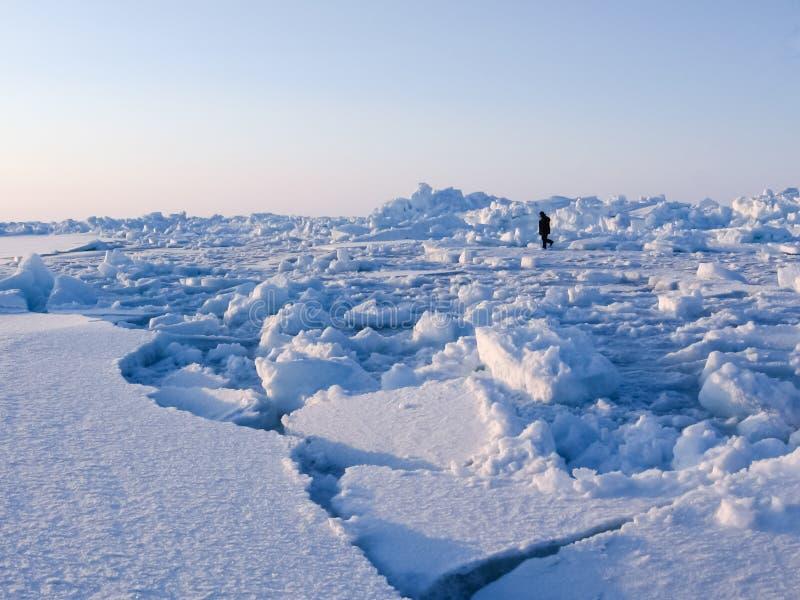 Chukotka海岸,北冰洋的多雪的风景 图库摄影