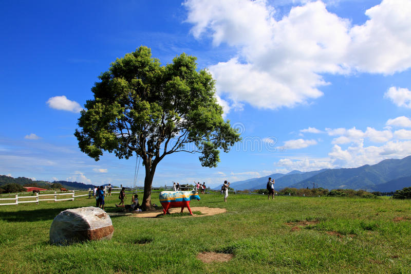Chulu Ranch,Taitung,Taiwan. stock images