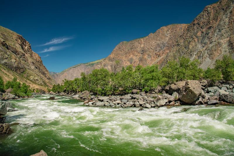 Chulyshman-Fluss tut Sprint auf dem direkten Standort, Altai-Berge, Sibirien, Russland stockbild