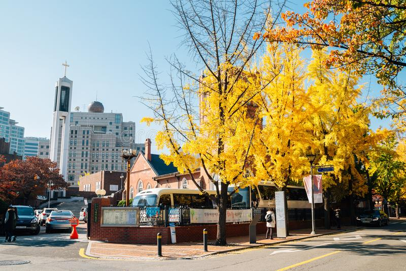 Chungdong Pierwszy kościół metodystów z jesieni ginkgo drzewami przy Deoksugung stonewall przejście w Seul, Korea zdjęcie stock