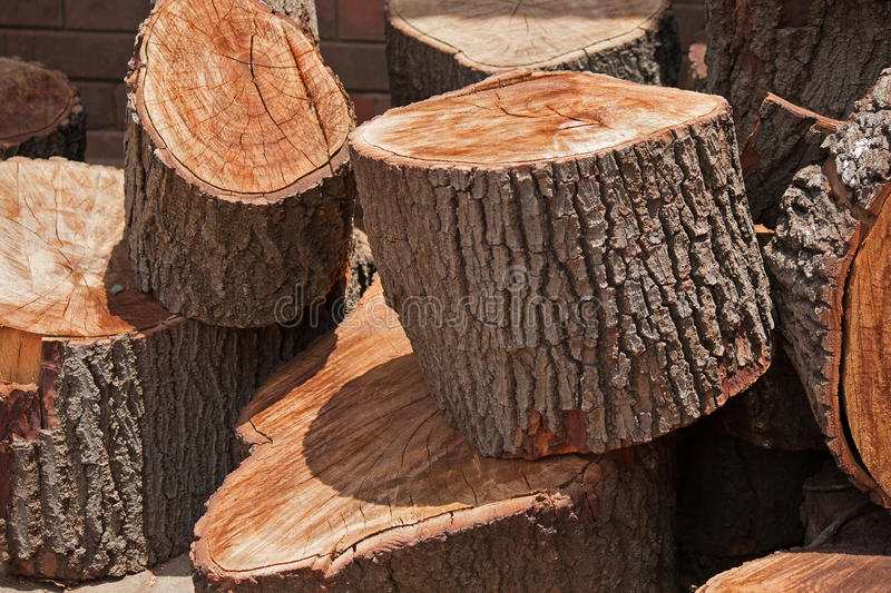 CHUNKY PIECES OF LOG. Large pieces of wooden logs royalty free stock image