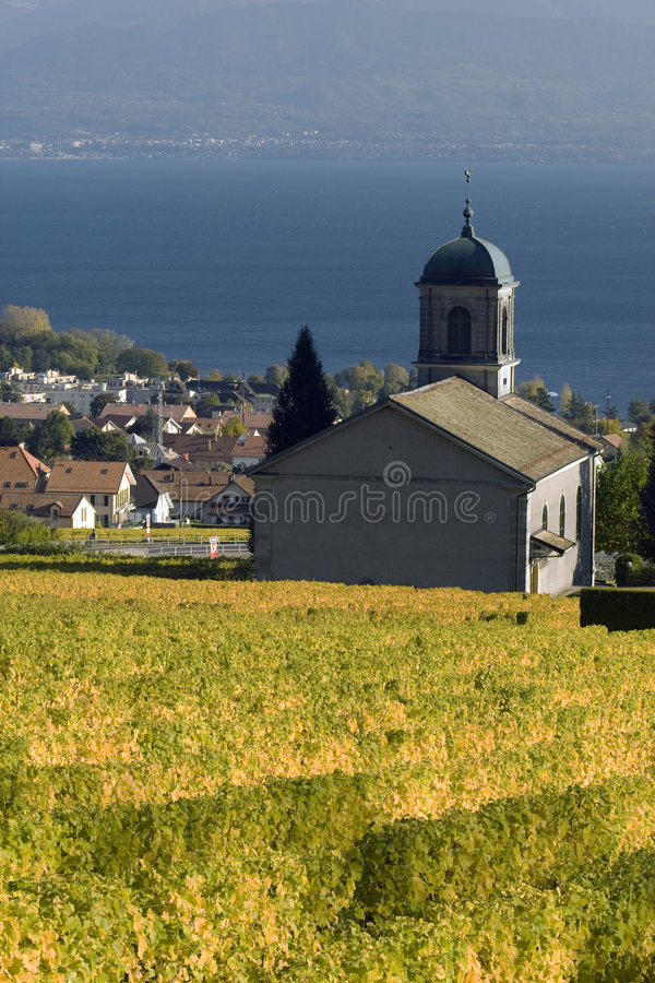 Church amongst the vines stock image