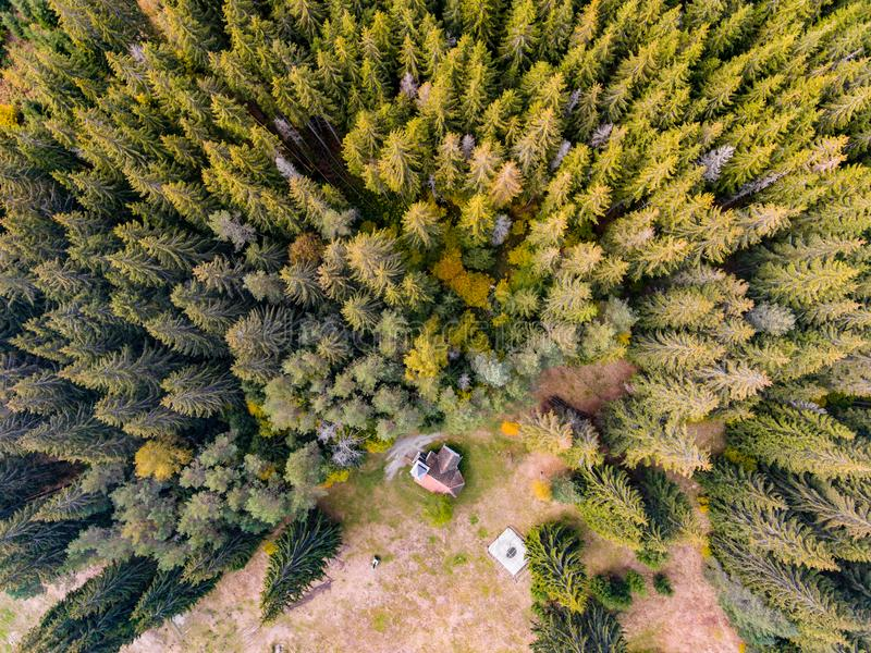 Church in the forest. Aerial View stock images