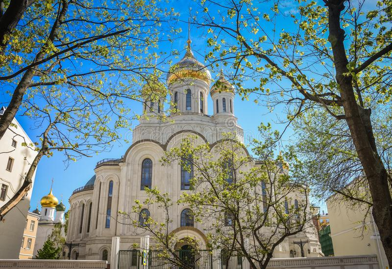Church with golden domes in the sunlight among trees royalty free stock photo