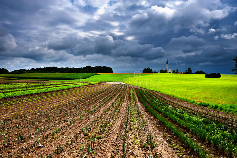 Church on the Hill. Plantation of Cabbage and Church on the Hill in Bavaria, Germany royalty free stock photo
