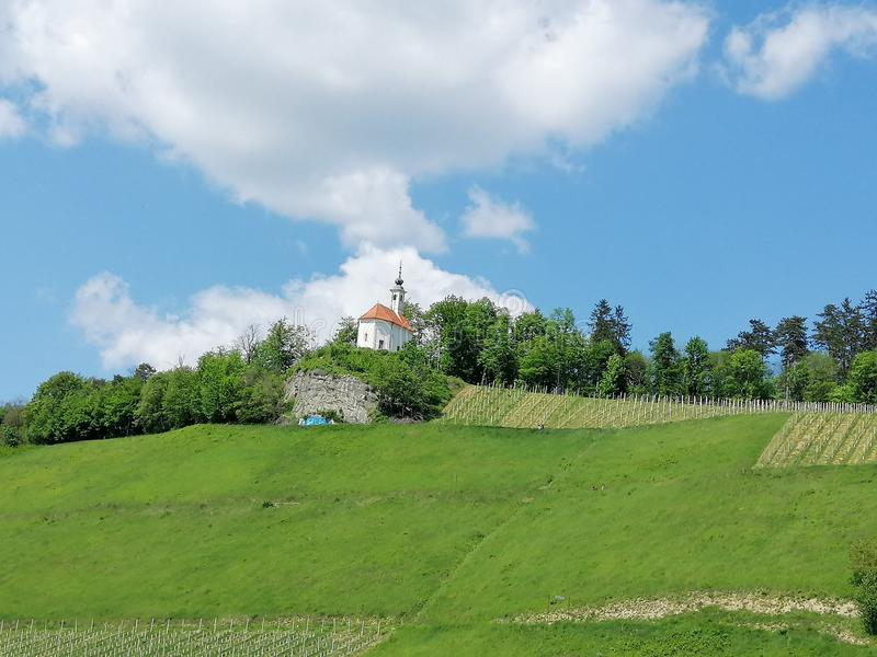 Church on the hill, vineyard, forest and blue sky with white clouds stock photo