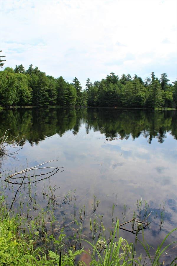 Church Pond stock photo