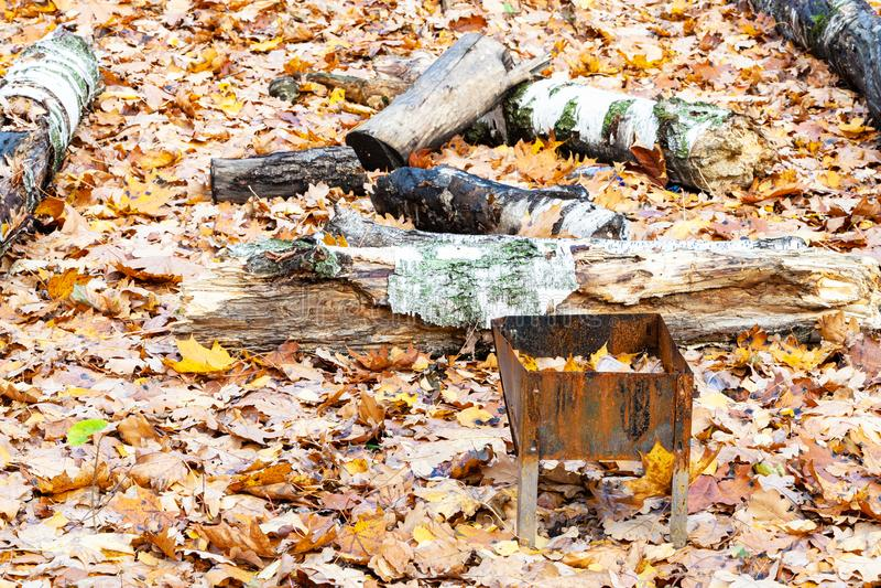 Churrasco esquecido em prados cobertos por folhas caídas fotografia de stock